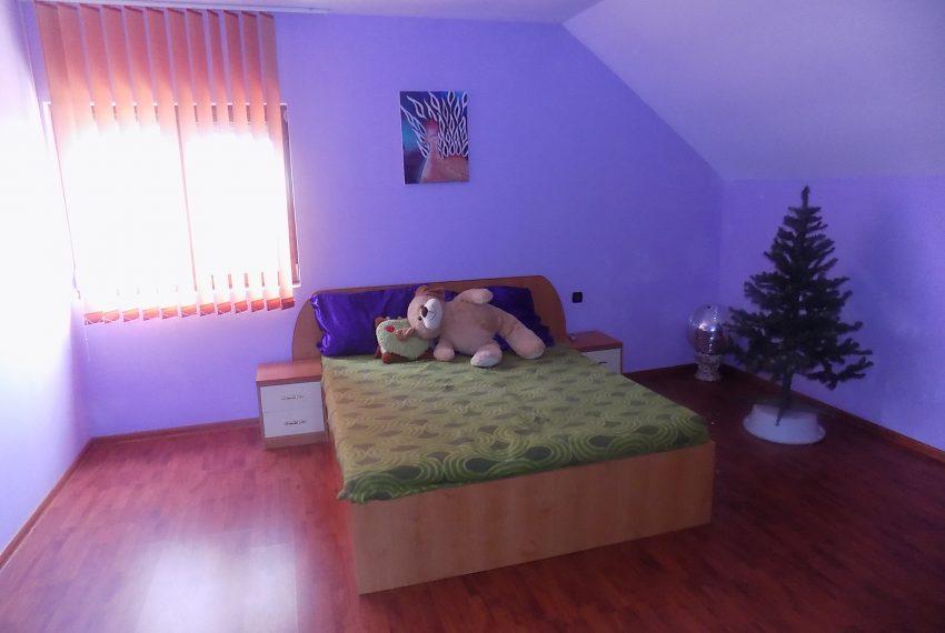 Casa Santandrei-Mihai 011