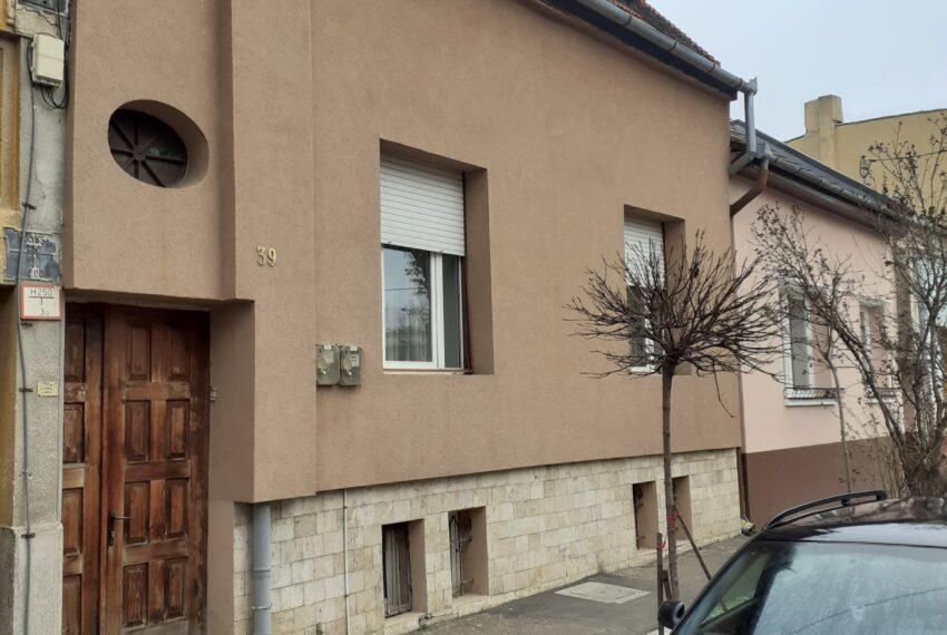 Casa Ioanci (3)