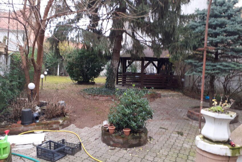 Casa Ioanci (6)